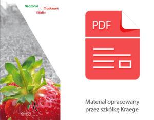 katalog sadzonek truskawki szkółka kraege