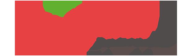 Logo_boryna