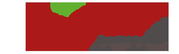 Logo_boryna_strona