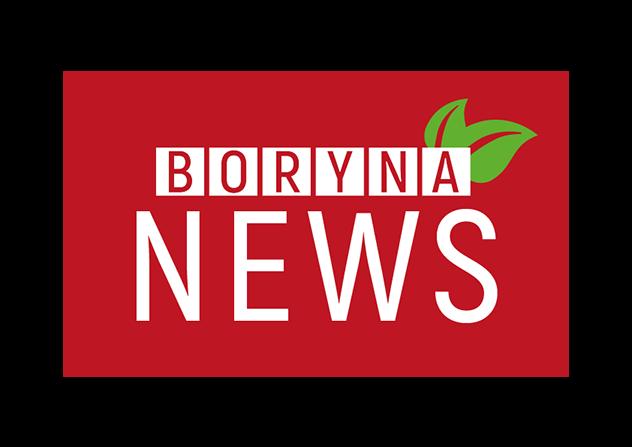 logo boryna news-02