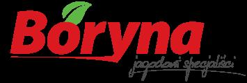 boryna-logo-jagodowi-specjalisci-1